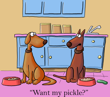 a dogs sharing a pickle